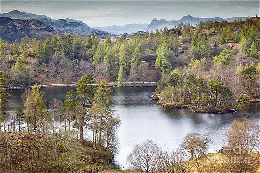Tarn Howes and The Langdales by George Hodlin