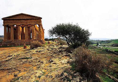 Temple of Concordia 2 by Steve Bisgrove