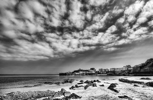 Steve Purnell - Tenby Harbour from North Beach Mono