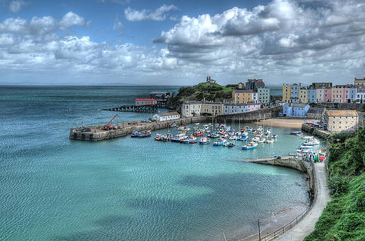 Steve Purnell - Tenby Harbour Pembrokeshire 4