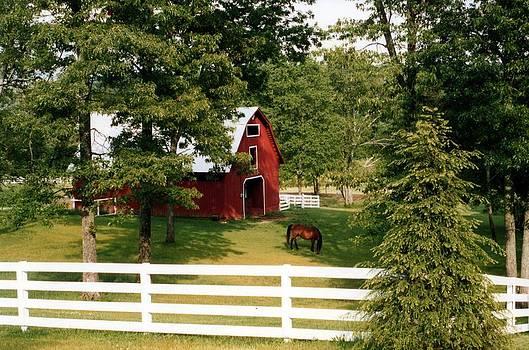 Tennessee Treasured.... by Tanya Tanski