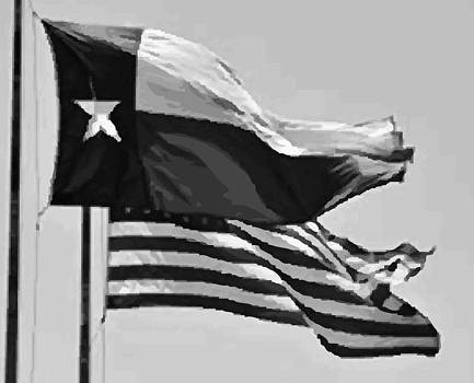 Texas and USA Flags Flying BW45 by Scott Kelley