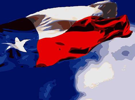 Texas Flag in the Wind Color 16 by Scott Kelley