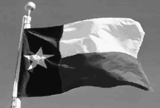 Texas Flag pole BW45 by Scott Kelley