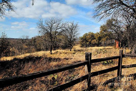 Texas Prairie Land by Kelly Christiansen