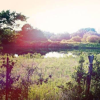 Texas Sunset. #pond #flatonia #ranch by Victoria Haas