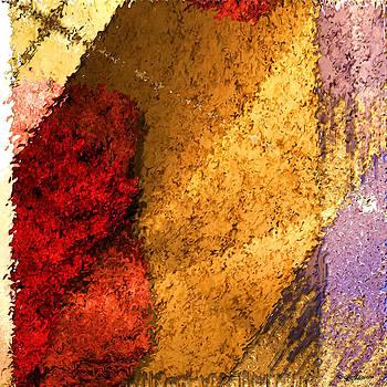 Textile 2 by Robert Matson
