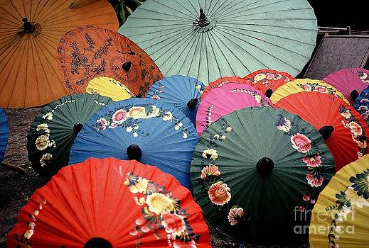 Thai Umbrellas by Ranjini Kandasamy