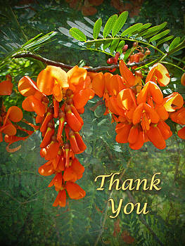 Mother Nature - Thank You Greeting Card - Scarlet Wisteria