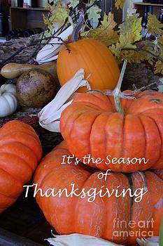 Mary Deal - Thanksgiving Pumpkins