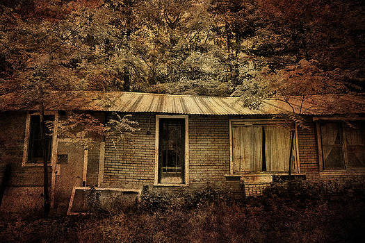 Emily Stauring - The Abandoned