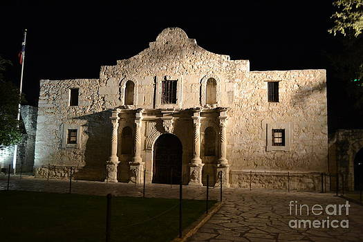 The Alamo at Night by Stacey Rapp