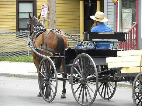 Peggy  McDonald - The Amish Way