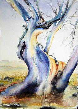 The Ancient One by Carol McLagan