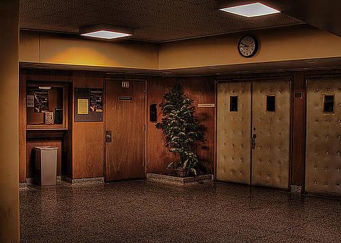 David Patterson - The Auditorium