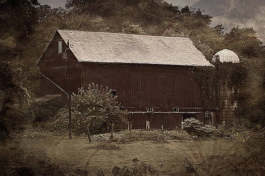 The Barn on Nettle Rd by Steve Buckenberger