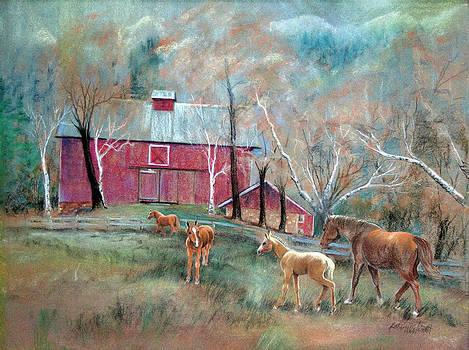 The Barn Yard by LaReine McIlrath