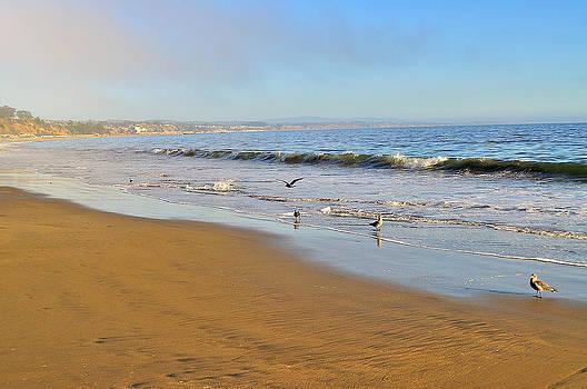 The Beach by Ewa Kuc