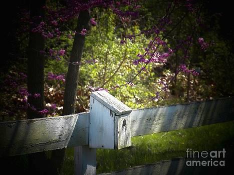 The Bird House by Joyce Kimble Smith