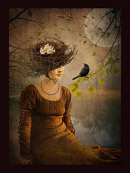 The Bird Watcher by Marie  Gale
