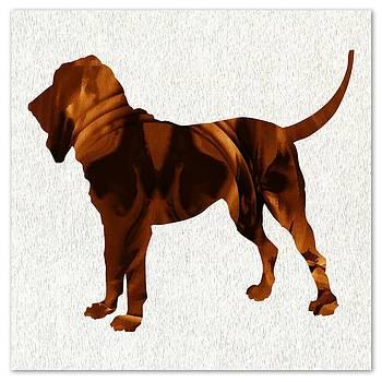 Daryl Macintyre - The Bloodhound