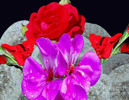 The Bouquet by Dwayne Cain