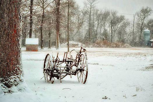 The Broken Wheel by Kelly Reber