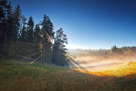 The Charm of Sunrise by Evgeni Dinev