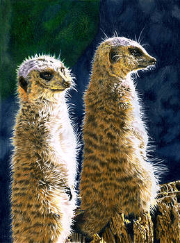 The Cheeky Girls by Bev Lewis