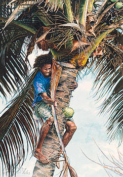 The coconut tree by Gregory Jules