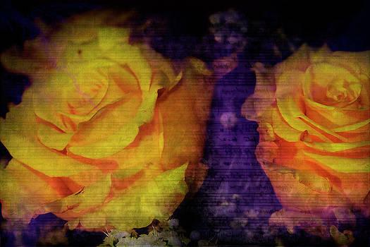 Scott Hovind - The Color of Music