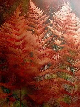 The copper elms by Avi Gorzhaltsan