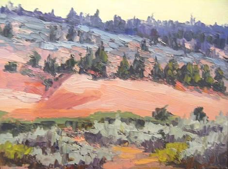 Kathleen Strukoff - The Coral Pink Sand Dunes