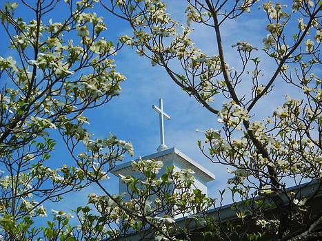 The Cross and The Dogwood by Jeff Moose