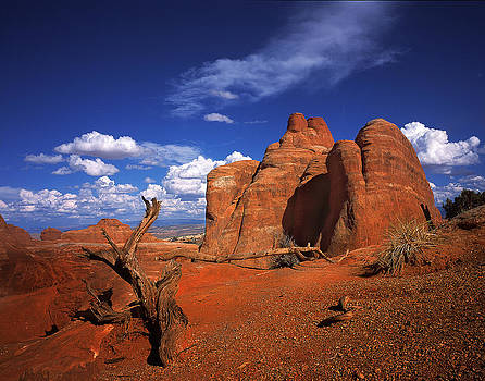 The Devils Garden in Arches National Park by Daniel Chui