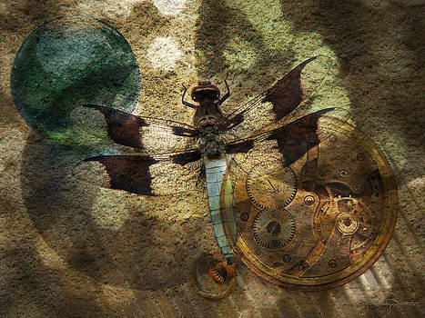 The Dharma Of The Dragonfly by Karen Casey-Smith