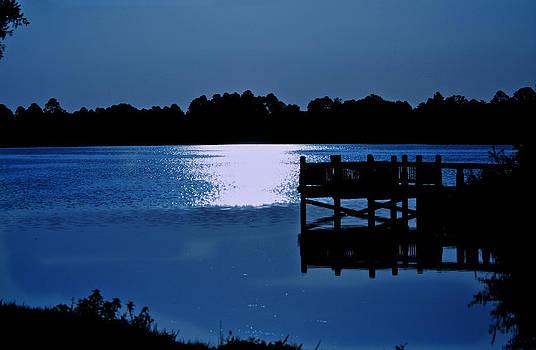The Dock Wolf Lake Sebring Florida by Jay Warwick