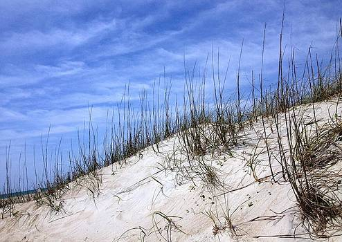 The Dune's of Atlantic Beach NC by Joan Meyland