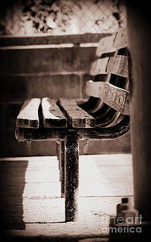 The Empty Bench by LillyAnn Venturino
