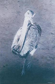 The Emu by Terry Forrest