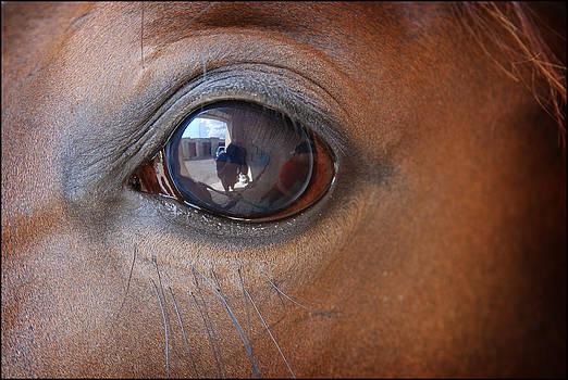 The Eye by Gunnar Boehme