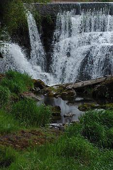 The Falls by Wanda Jesfield