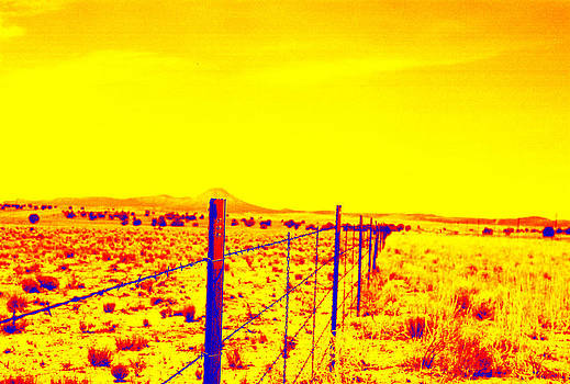 The Fence Line by Charles Benavidez