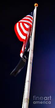 Pravine Chester - The Flag