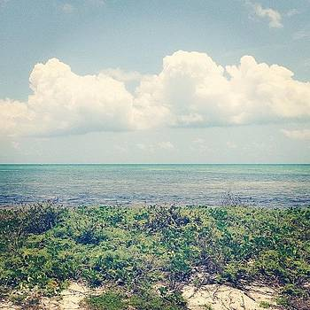 The Florida Keys by Jenna Gibson