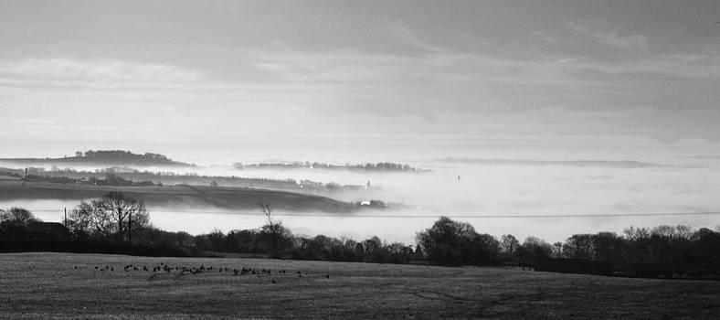 The Fog by Steve Watson