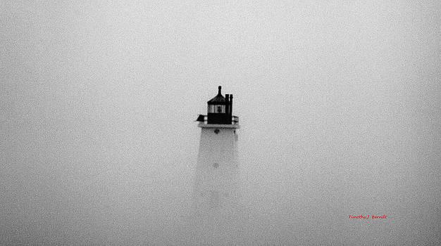 The Fog by Timothy J Berndt