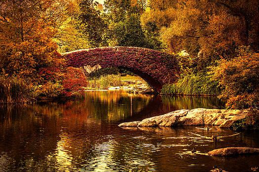 The Gapstow Bridge by Chris Lord