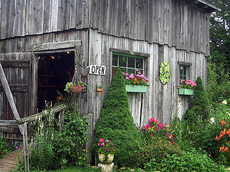 The Garden Shed by J R Baldini M Photog Cr