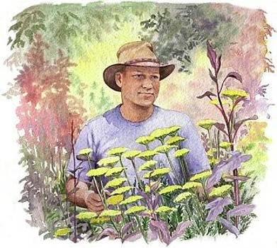 The Gardener by Maureen Carter
